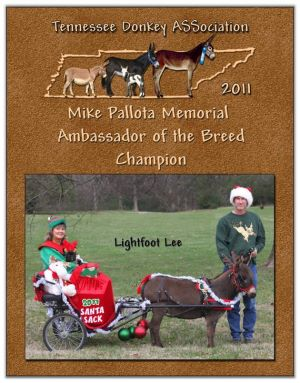 2011 Tennessee Donkey ASSociation High Point Ambassador (3-Way Tie)