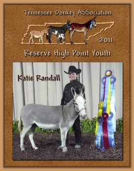 2011 Reserve High Point Youth of the Tennessee Donkey ASSocation!