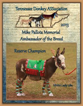 2013 Tennessee High Point Reserve Champion Ambassador Donkey!