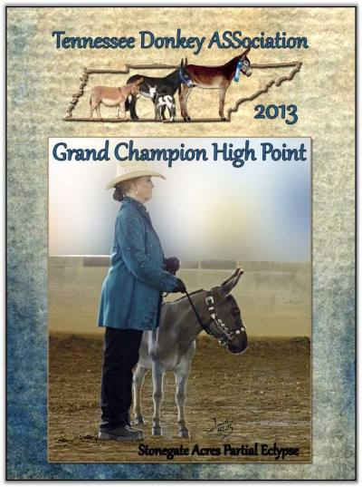 Mookie, 2013 Gennessee High Point Overall Grand Champion!
